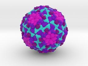 Sacbrood Virus in Natural Full Color Sandstone
