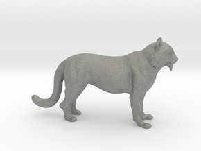 HO Scale Saber Tooth Tiger in Gray Professional Plastic