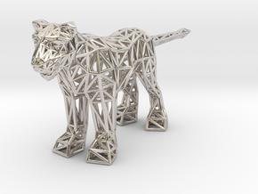 Lion (adult female) in Platinum