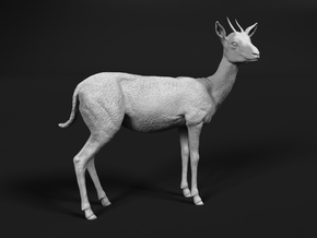 Thomson's Gazelle 1:48 Standing Female in Smooth Fine Detail Plastic
