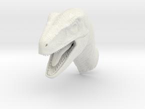 Velociraptor Head in White Natural Versatile Plastic