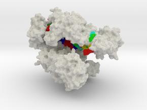 CRISPR-Cpf1 in Natural Full Color Sandstone