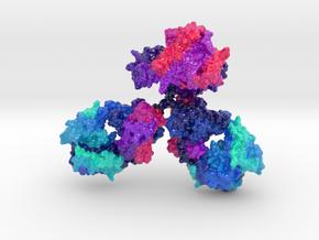 ImmunoglobulinAntibody (Large) in Glossy Full Color Sandstone