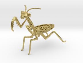 Praying mantis in Natural Brass
