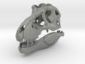 Tyrannosaurus - dinosaur skull replica in Gray Professional Plastic: 1:10