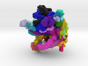 Spliceosome in Natural Full Color Sandstone
