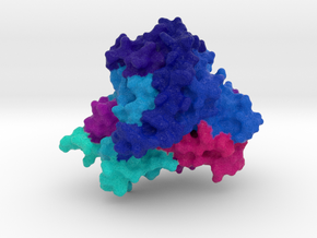 CYP1A2 Protein in Natural Full Color Sandstone