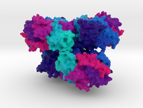 CYP3A4 Protein in Natural Full Color Sandstone