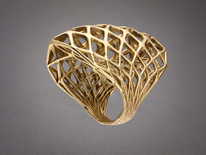 Ring 002 in Natural Bronze