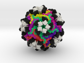 Parvovirus B19 with Antibodies in Natural Full Color Sandstone