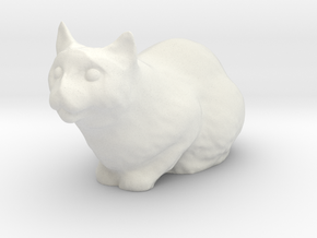 1/24 G Scale Cat Loaf for Diorama in White Natural Versatile Plastic