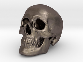 Skull Scientific 62mm in Polished Bronzed-Silver Steel
