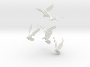 1/12 Doves for Diorama in White Natural Versatile Plastic