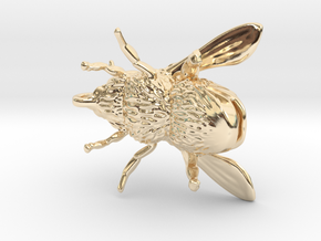 Honey Bee - Pendant - Vessels in 14k Gold Plated Brass