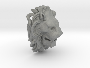 Lion Pendant in Gray Professional Plastic
