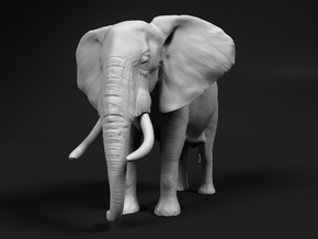 African Bush Elephant 1:12 Standing Male in White Natural Versatile Plastic