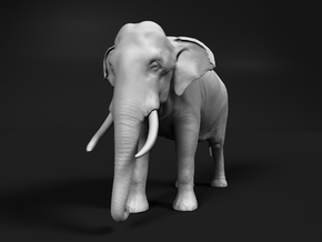 Indian Elephant 1:20 Standing Male in White Natural Versatile Plastic