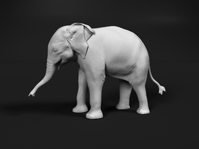 Indian Elephant 1:32 Standing Female Calf in White Natural Versatile Plastic