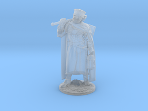Knight of Calatrava 28 mm / 30 mm / 34 mm in Smoothest Fine Detail Plastic: Medium