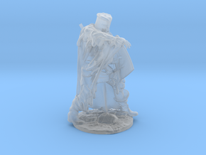 Regurgitated Knight   in Smoothest Fine Detail Plastic: Medium