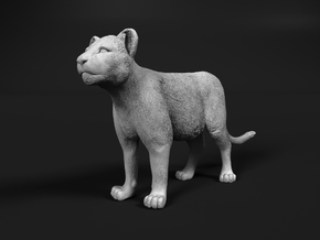 Lion 1:15 Standing Cub in White Natural Versatile Plastic