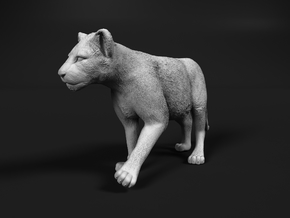 Lion 1:6 Walking Cub in White Natural Versatile Plastic