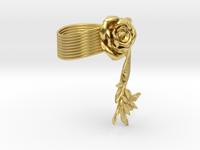 Fantasia_spiral: la Rose et Daphne in Polished Brass