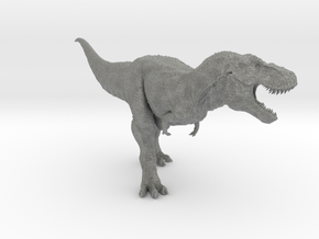 Tyrannosaurus Rex 1/40 DeCoster  in Gray PA12