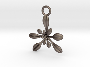 Arabidopsis Ornament - Science Gift in Polished Bronzed-Silver Steel