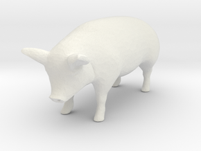 1-64 special pig in White Natural Versatile Plastic