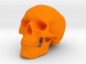 Skull in Orange Processed Versatile Plastic