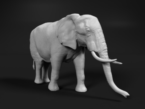 African Bush Elephant 1:12 Walking Female in White Natural Versatile Plastic