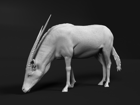 Gemsbok 1:6 Drinking Female in White Natural Versatile Plastic
