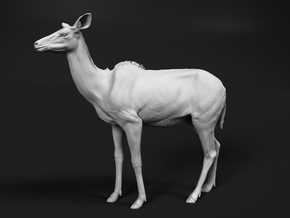 Greater Kudu 1:9 Chewing Female in White Natural Versatile Plastic