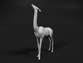 Gerenuk 1:48 Female feeding on four legs in Smooth Fine Detail Plastic