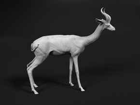 Gerenuk 1:20 Standing Male in White Natural Versatile Plastic