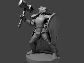 Dragonborn Fighter with Hammer and Shield in Smooth Fine Detail Plastic