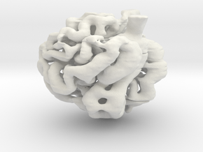 glomerulus capillary network in White Natural Versatile Plastic: Medium