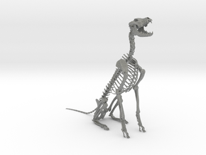 Skeletal Wolf (Sitting) in Gray Professional Plastic