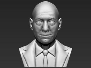 Professor X from X-Men bust in White Natural Versatile Plastic
