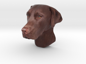 Wall mount / Brown Labrador / 150mm / art.#MK013 in Natural Full Color Sandstone