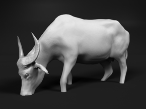 Domestic Asian Water Buffalo 1:60 Grazing in Water in Smooth Fine Detail Plastic