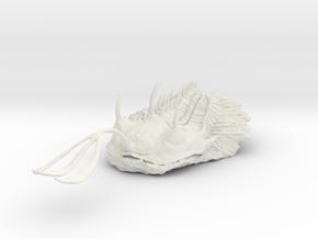 Trilobite - Walliserops Trifurcatus in White Natural Versatile Plastic: Large