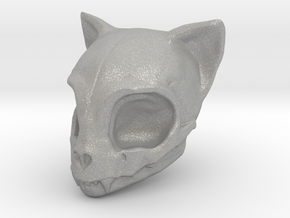 Cat Skull in Aluminum