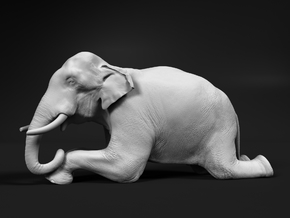 Indian Elephant 1:32 Kneeling Male in White Natural Versatile Plastic