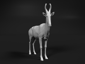 Lelwel Hartebeest 1:32 Standing Male in White Natural Versatile Plastic
