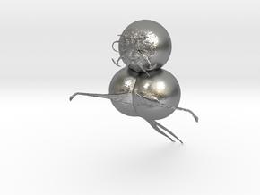CARTOONCHARTER1 in Natural Silver
