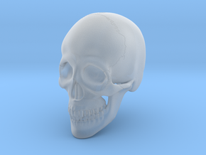 1:16 Scale Human Skull in Smooth Fine Detail Plastic