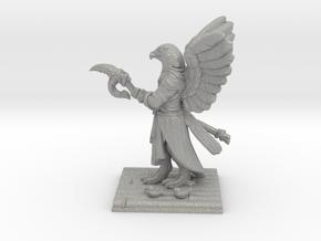 Aarakocra Monk Miniature in Aluminum