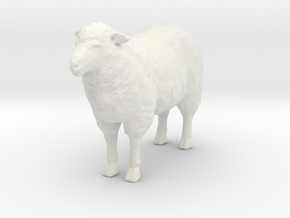 1-20th Scale Sheep in White Natural Versatile Plastic